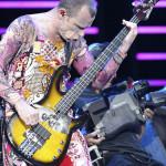 Flea - short musicians