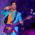 Prince multi-instrumentalist