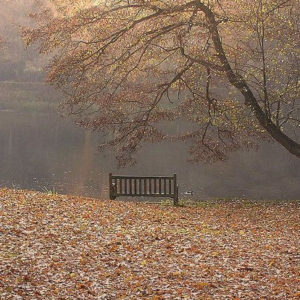 songs about november